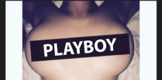 Playboy Freud Playboy, freud, gary archer, independent music, bay area music, superindykings
