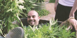 Marijuana Mania, berner, blog, medical marijuana, superindykings